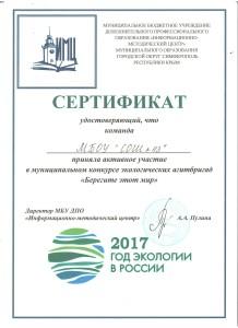 Сертификат школа (1)